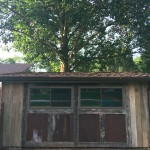 Custom Built Shed Using Reclaimed Barnwood