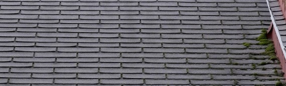 Roofing – To Repair or To Replace?